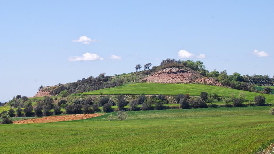 24.04.2016 Paisatge  Sant Ramon -  Ramon Sunyer