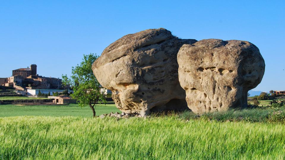Els pallers de pedra - L'Aranyó