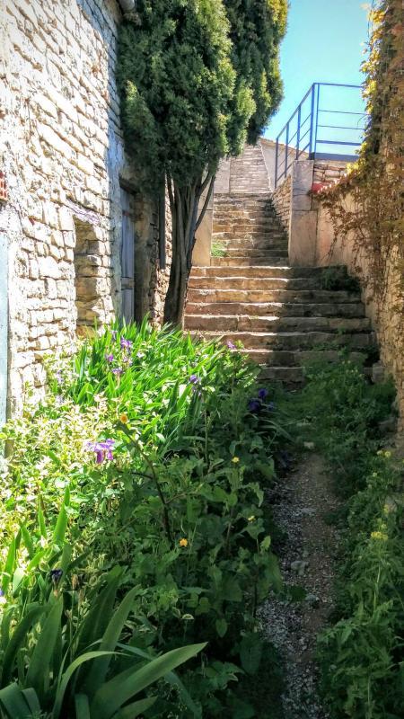 01.05.2016 carrer  Vilamajor -  Ramon Sunyer