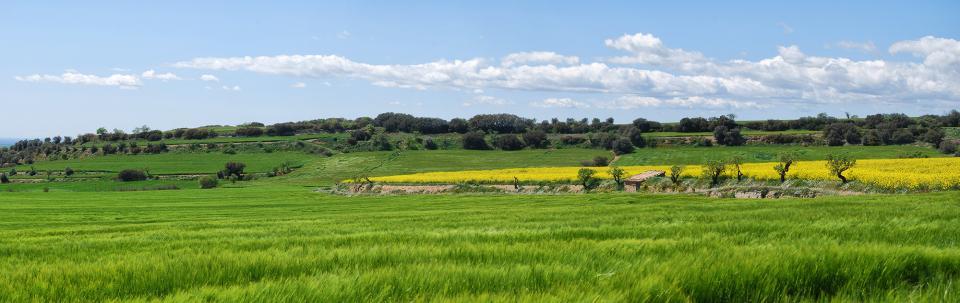 26.04.2016   Sant Guim de la Plana -  Ramon Sunyer