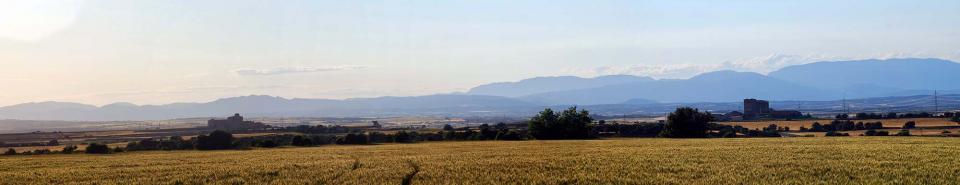 22.05.2016 castells  Els Plans de Sió -  Ramon Sunyer