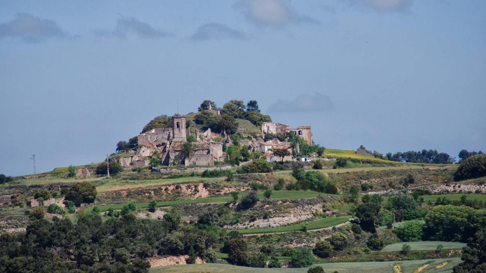 Castle of Montlleó - Author Ramon Sunyer (2016)