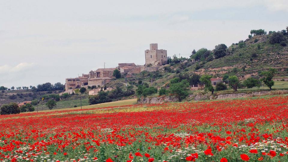 22.05.2016 roselles  Malgrat -  Ramon Sunyer