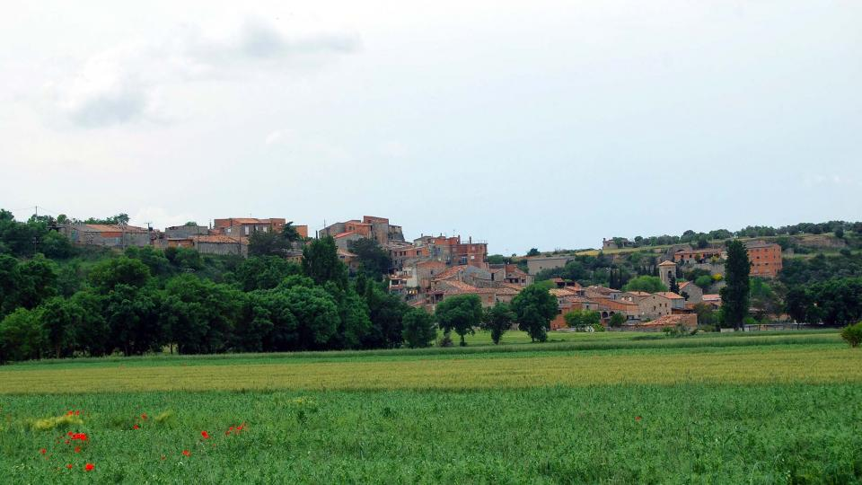 22.05.2016   Castellnou d'Oluges -  Ramon Sunyer
