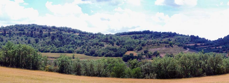 05.06.2016   Calonge de Segarra -  Ramon Sunyer