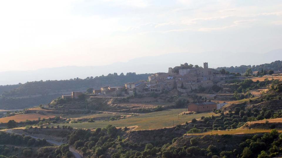 11.06.2016   Montoliu de Segarra -  Ramon Sunyer