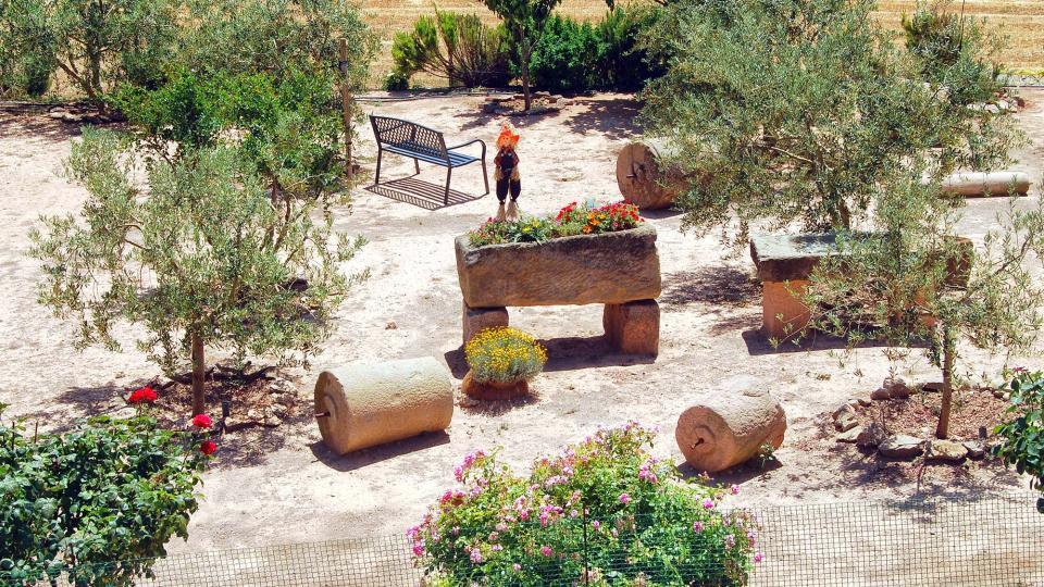 24.06.2016 jardí  Pelagalls -  Ramon Sunyer