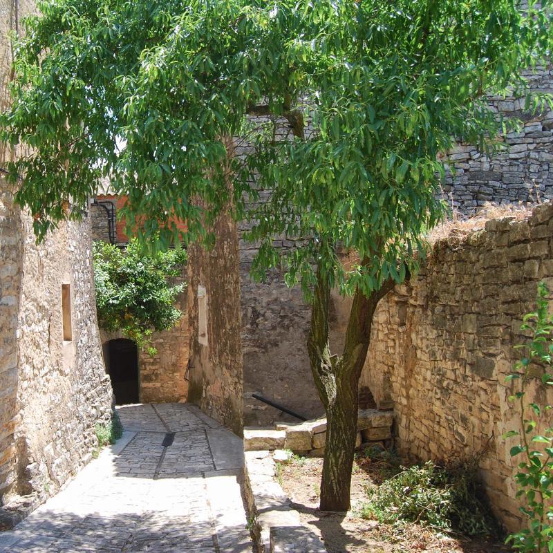 10.07.2016 vila closa  Sant Domí -  Ramon Sunyer