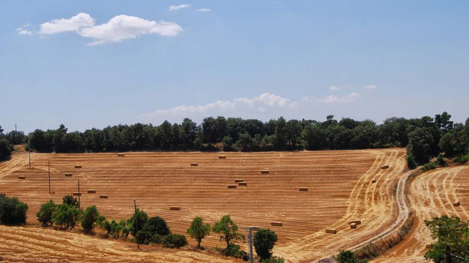 10.07.2016 paisatge  Sant Domí -  Ramon Sunyer