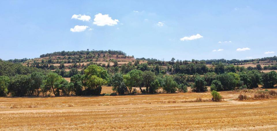 10.07.2016 Vall del Sió  Santa Fe -  Ramon Sunyer