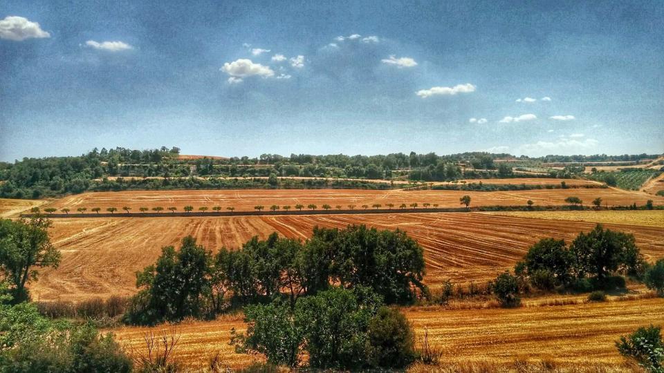 10.07.2016   Santa Fe -  Ramon Sunyer