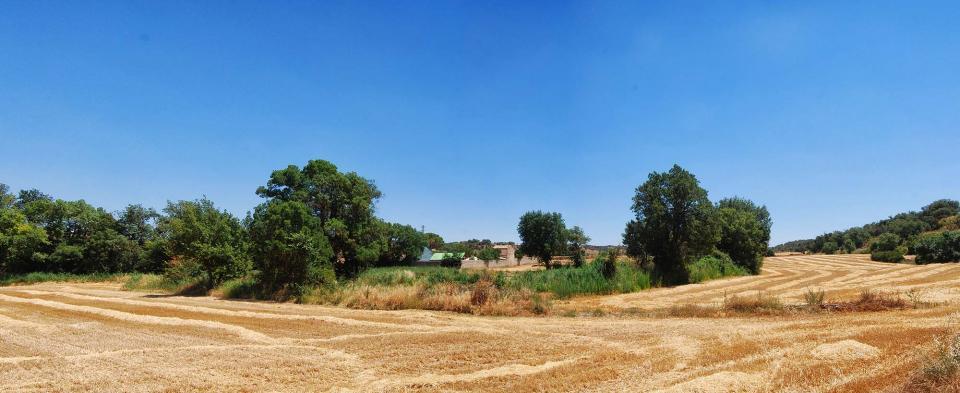 17.07.2016 ribera del Sió  Tarroja de Segarra -  Ramon Sunyer