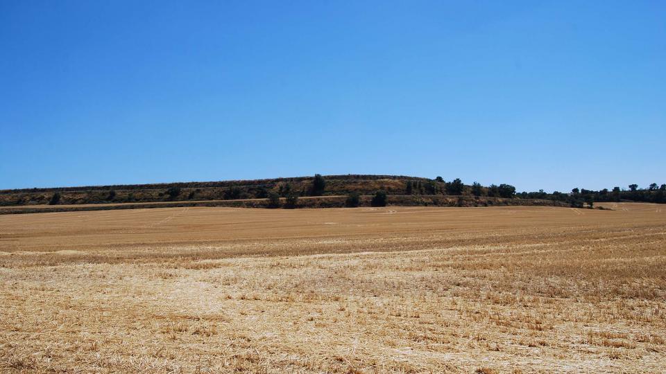 17.07.2016 paisatge  Castellmeià -  Ramon Sunyer