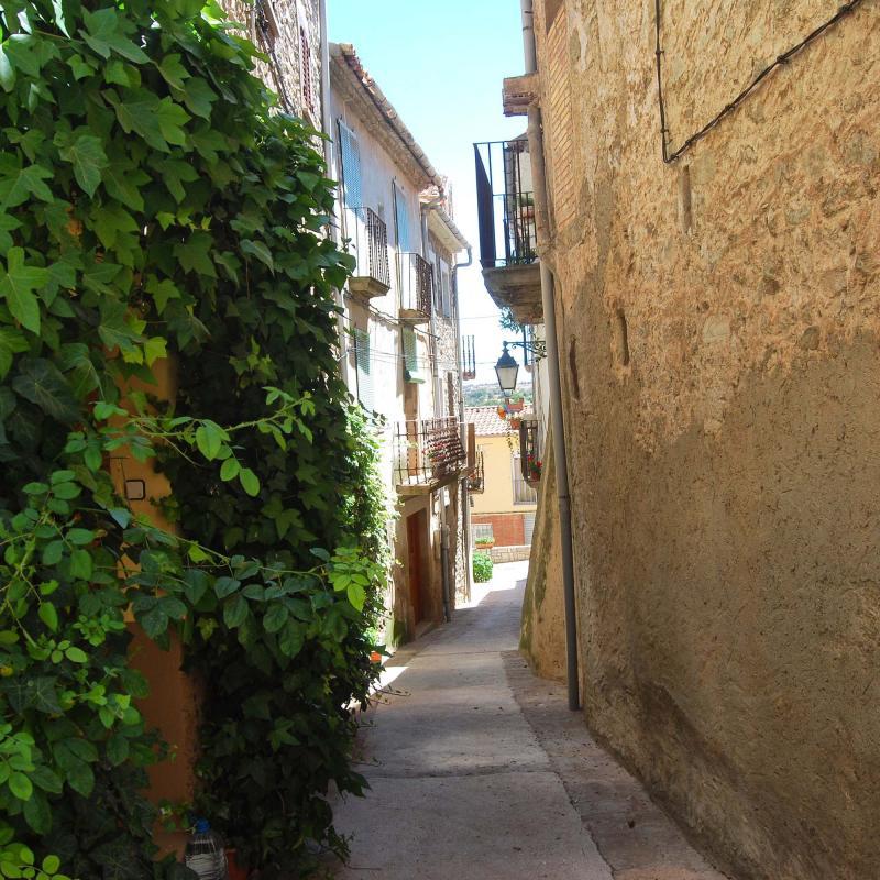 17.07.2016 carrer  Tarroja de Segarra -  Ramon Sunyer