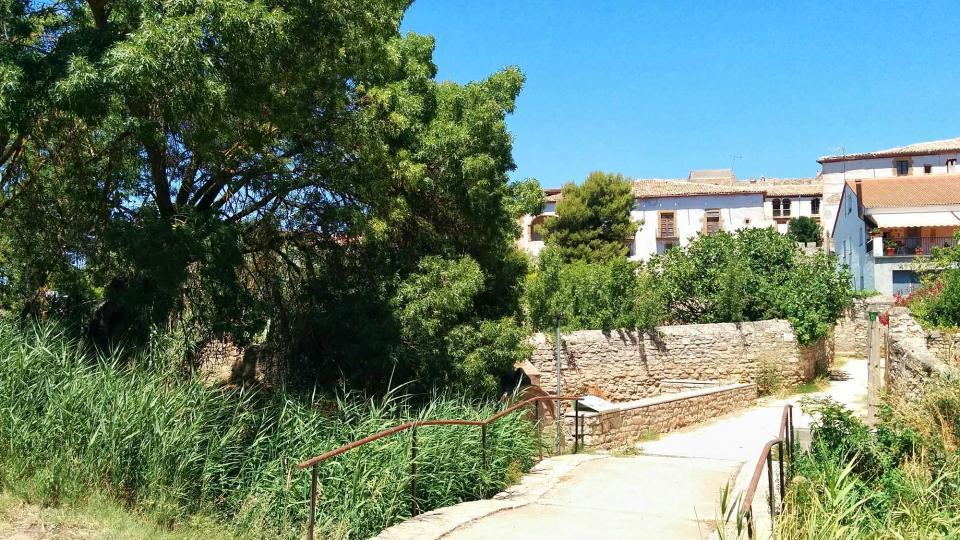17.07.2016 font dels horts  Tarroja de Segarra -  Ramon Sunyer