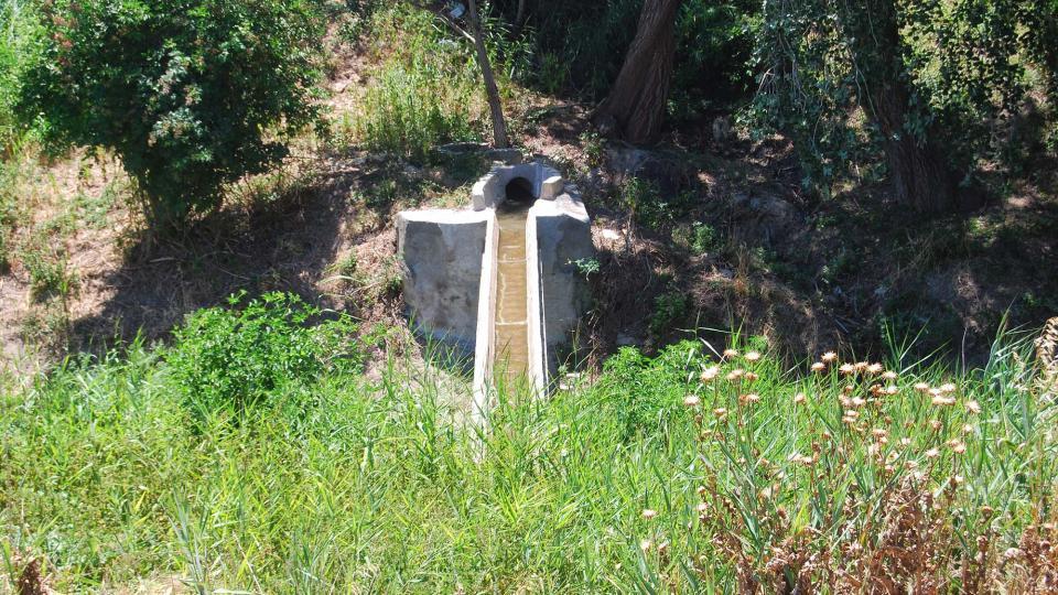 17.07.2016 l'aigua és abundant  Sant Antolí i Vilanova -  Ramon Sunyer