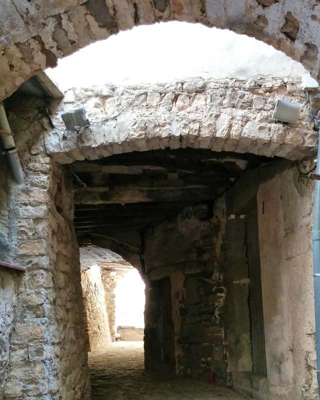 08.08.2016   Sant Guim de la Plana -  Ramon Sunyer