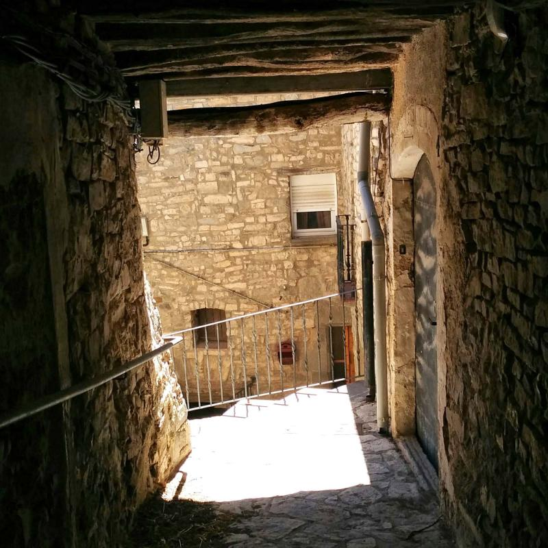 06.08.2016   Sant Guim de la Plana -  Ramon Sunyer