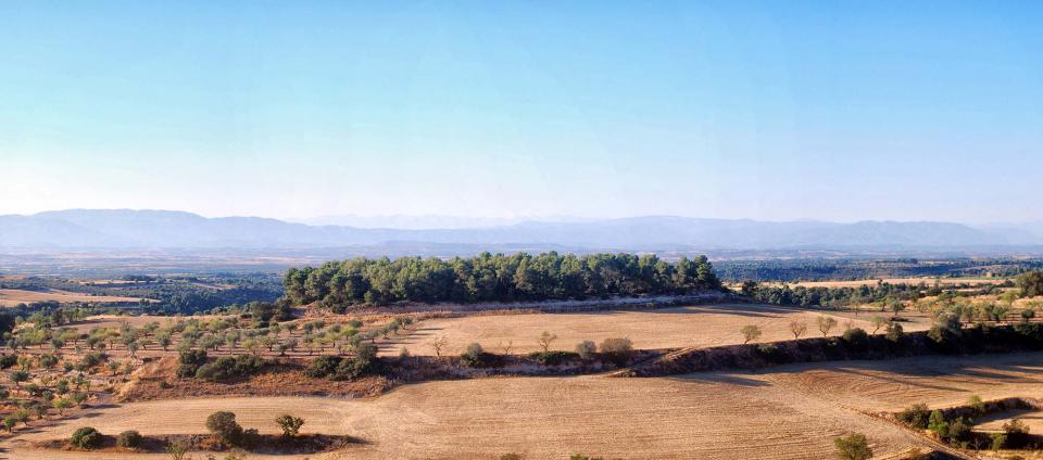 24.08.2016   L'Ametlla de Segarra -  Ramon Sunyer