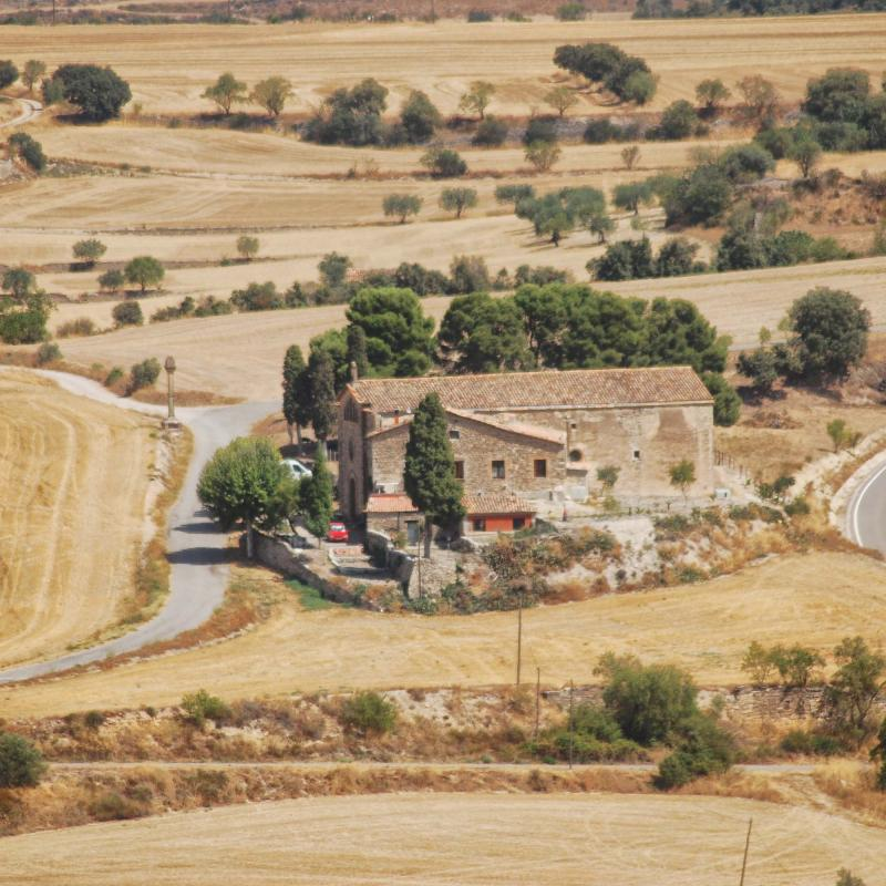 28.08.2016   Granyena de Segarra -  Ramon Sunyer