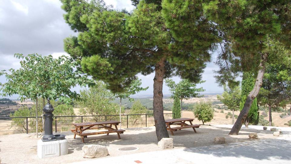 31.08.2016 parc  La Pobla de Ferran -  Ramon Sunyer