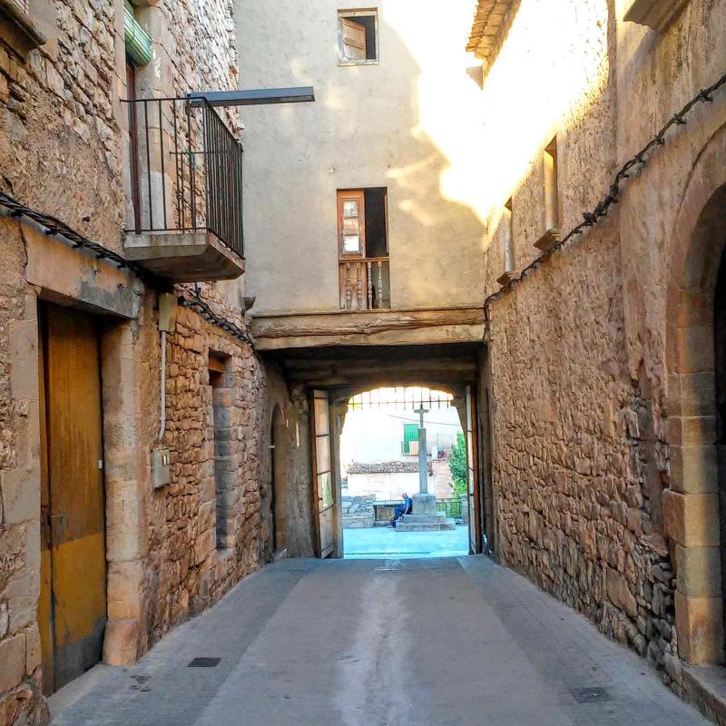 Vila closa de Mas de Bondia - Autor Ramon Sunyer (2014)