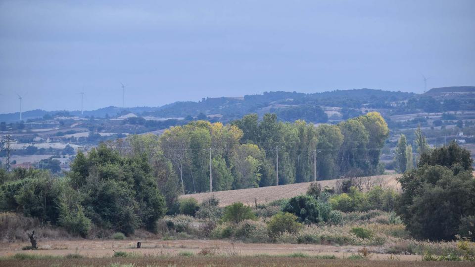 09.10.2016 paisatge del riu Ondara  Vergós -  Ramon Sunyer
