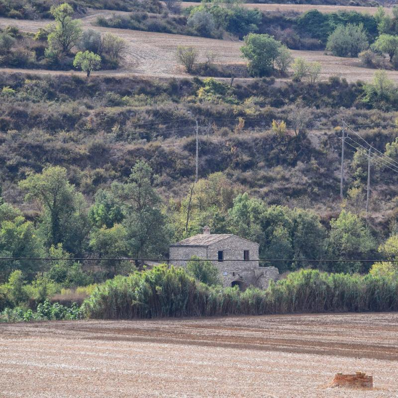 09.10.2016 paisatge  Vergós -  Ramon Sunyer