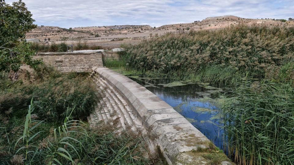 Espai fluvial  Peixera de Vergós - Autor Ramon Sunyer (2016)