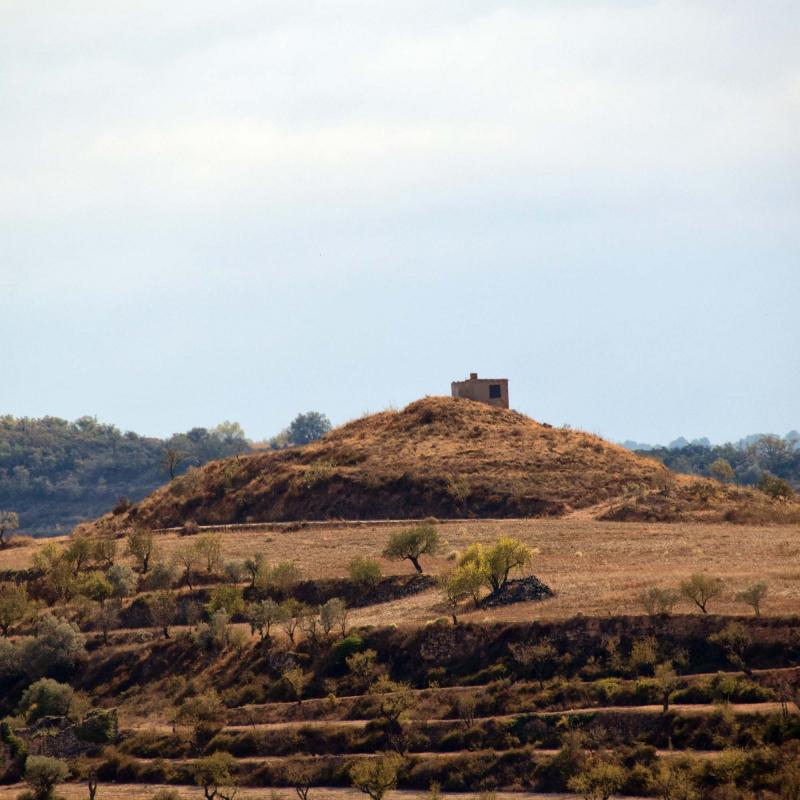 09.10.2016 paisatge  Cervera -  Ramon Sunyer