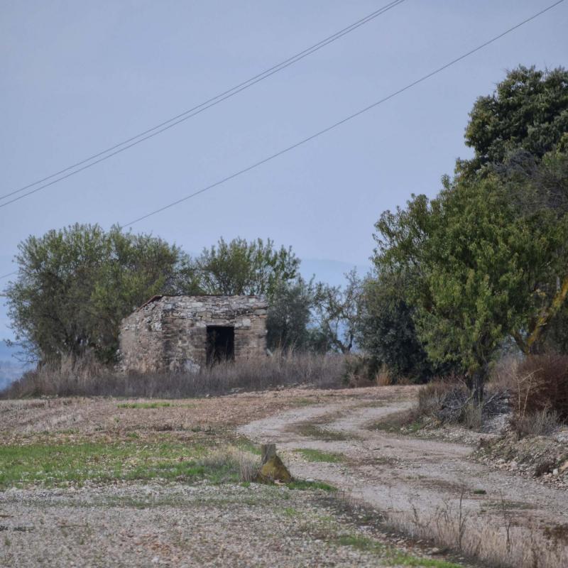 23.10.2016 cabana  Tarroja de Segarra -  Ramon Sunyer