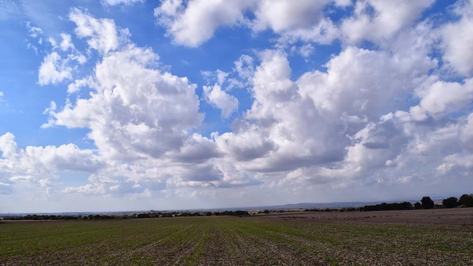 23.10.2016 paisatge  Tarroja de Segarra -  Ramon Sunyer