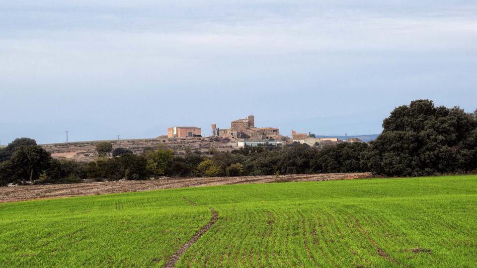 20.11.2016 Vista des de El Canós  L'Aranyó -  Ramon Sunyer