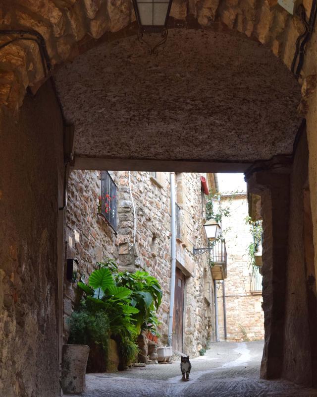 20.11.2016 portal  El Canós -  Ramon Sunyer