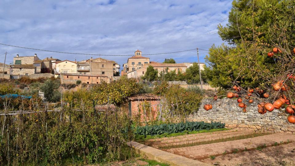 20.11.2016 vista des dels horts  El Canós -  Ramon Sunyer