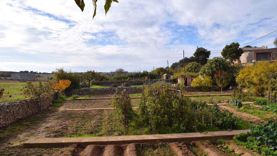 20.11.2016 Horts  El Canós -  Ramon Sunyer