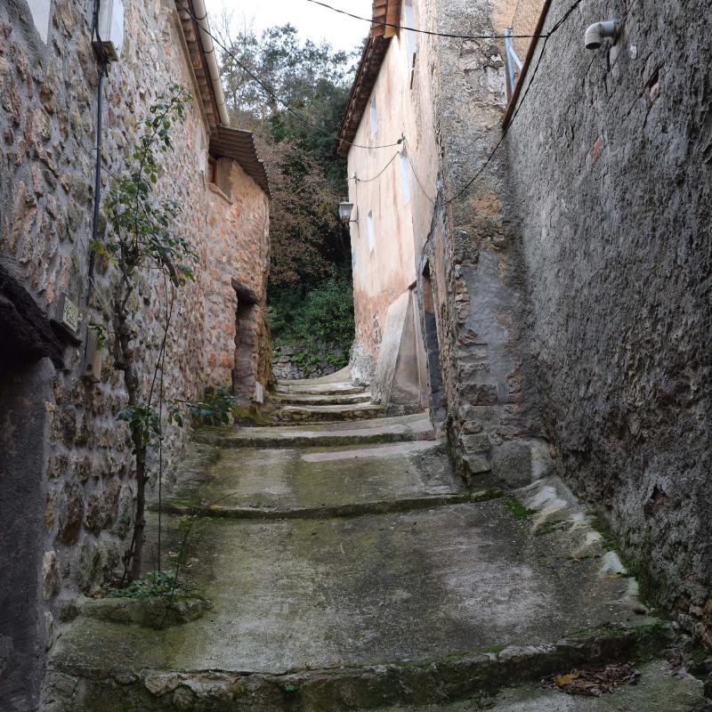 26.12.2016   Vallespinosa -  Ramon Sunyer