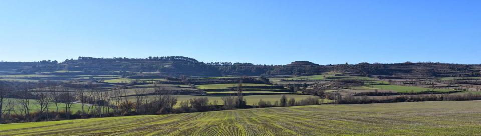 18.12.2016   Vall de l'Ondara -  Ramon Sunyer