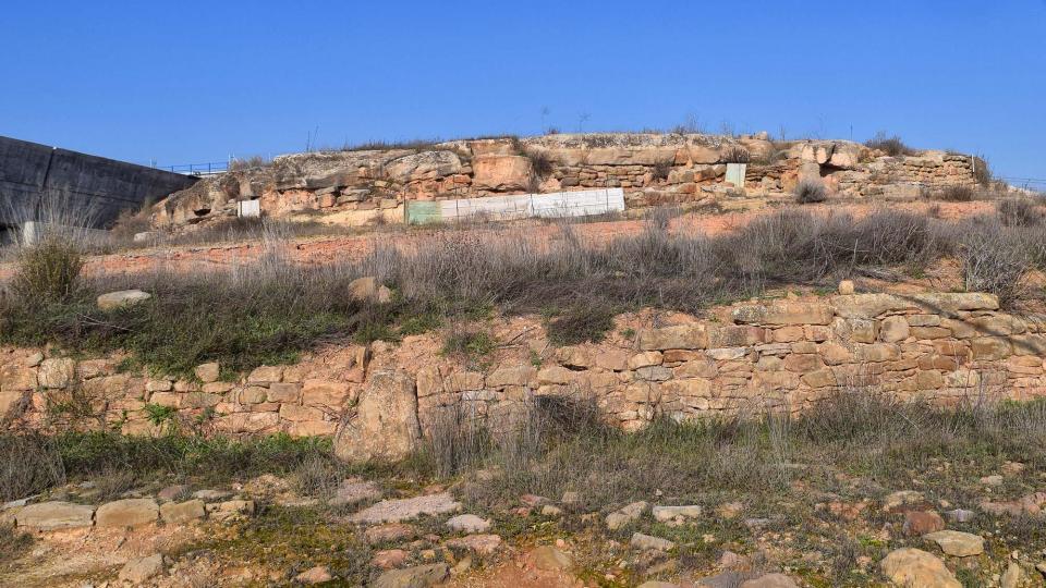 06.01.2017 Jaciment ibero-romà de Vilagrasseta  Els Plans de Sió -  Ramon Sunyer