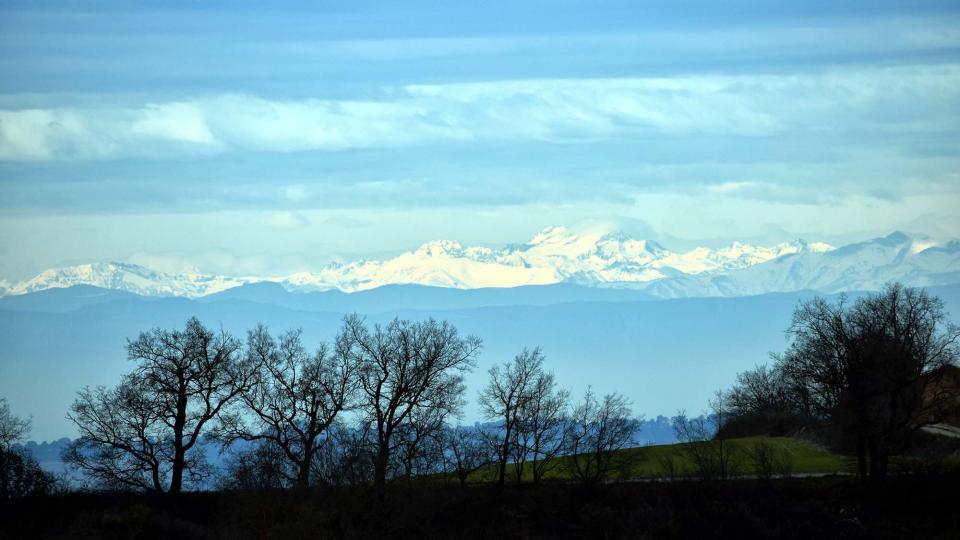 22.01.2017 Pirineu  Bellmunt de Segarra -  Ramon Sunyer