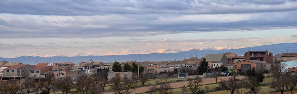 22.01.2017   Sant Ramon -  Ramon Sunyer