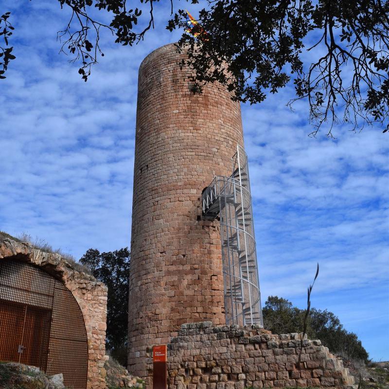 29.01.2017 Torre de la Manresana  La Manresana -  Ramon Sunyer