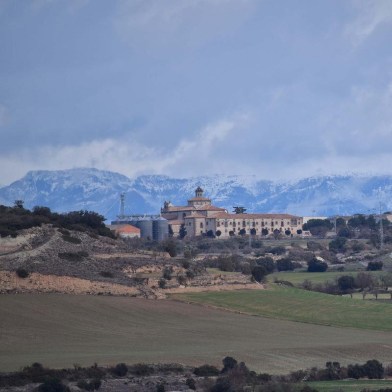 05.02.2017   Sant Ramon -  Ramon Sunyer