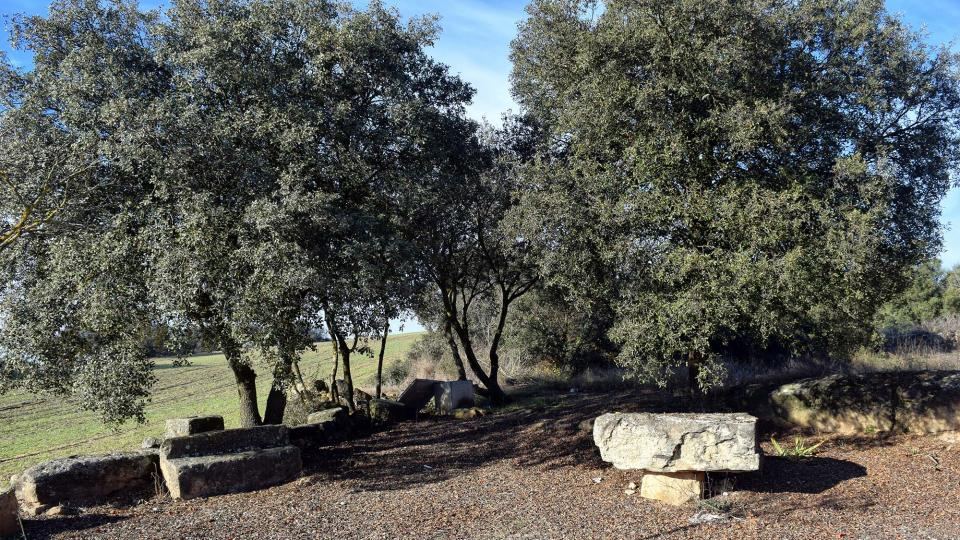 10.12.2016 Mare de Déu de la Soledad  Selvanera -  Ramon Sunyer