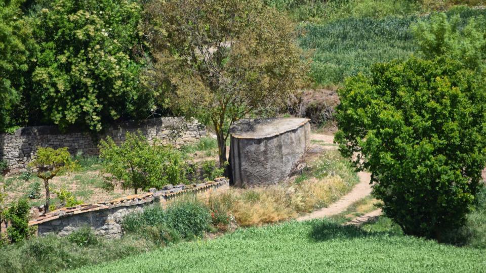 14.05.2017   Sant Domí -  Ramon Sunyer