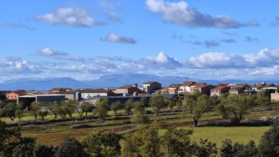 06.11.2016   Sant Ramon -  Ramon Sunyer