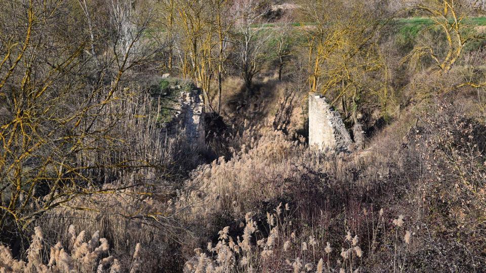 12.03.2017 Molí de la Cadena  Vallfogona de Riucorb -  Ramon Sunyer
