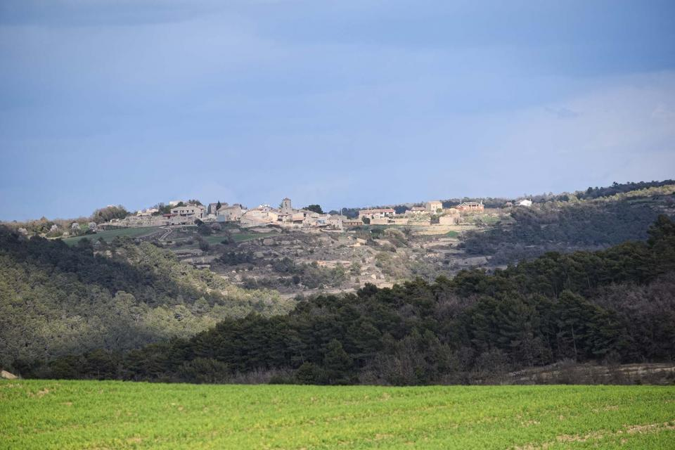 12.03.2017 Vista des de Passanant  Albió -  Ramon Sunyer