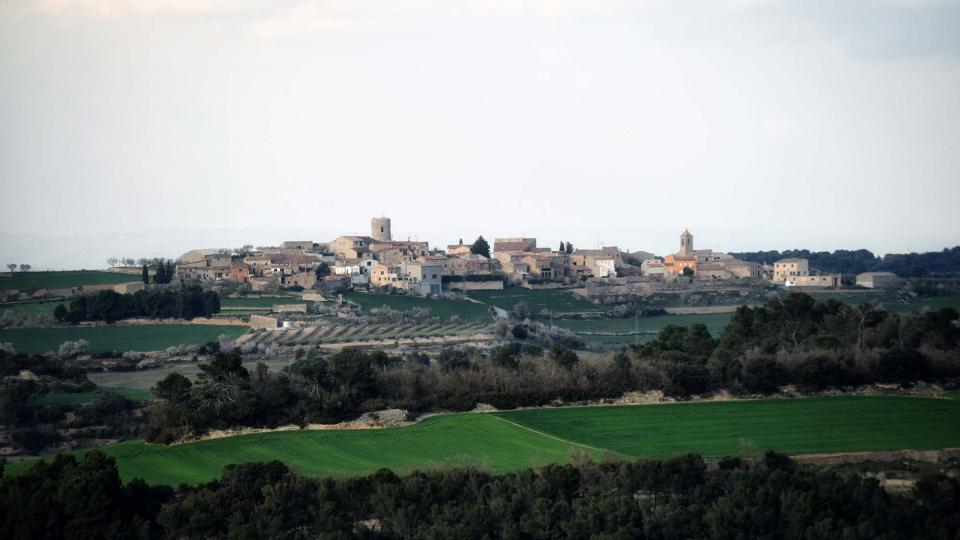 12.03.2017 vista des de Passanant  L'Ametlla de Segarra -  Ramon Sunyer