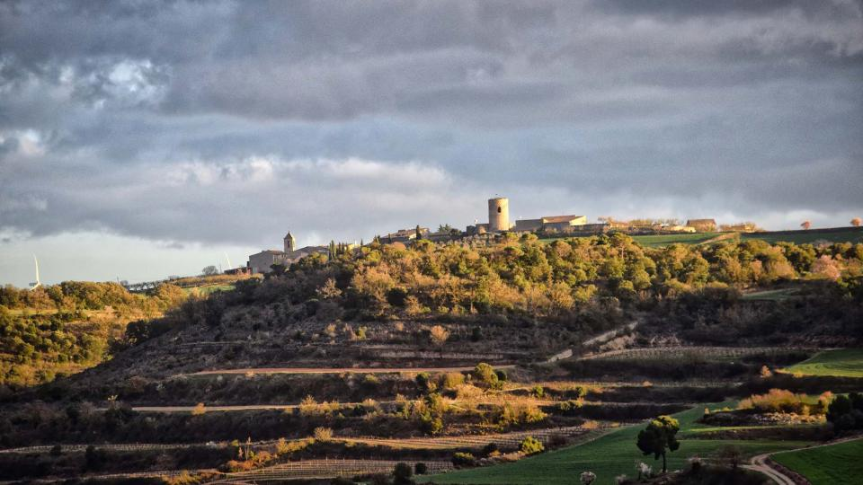 12.03.2017   L'Ametlla de Segarra -  Ramon Sunyer